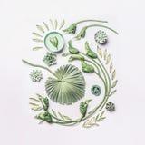 Η πράσινη τροπική σύνθεση φύλλων και λουλουδιών μπουκλών με το κύπελλο νερού στο άσπρο υπόβαθρο, τοπ άποψη, επίπεδη βάζει SPA και στοκ φωτογραφίες