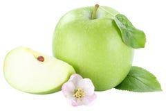 Η πράσινη φέτα φρούτων της Apple τεμάχισε το άνθος που απομονώθηκε στο λευκό Στοκ Εικόνες