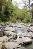Η προέλευση του ποταμού Belokurikha στα βουνά Altai Στοκ φωτογραφία με δικαίωμα ελεύθερης χρήσης