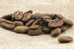Η προετοιμασία για επιλογές καφέ γίνεται από τα φασόλια καφέ Στοκ Φωτογραφία