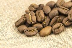 Η προετοιμασία για επιλογές καφέ γίνεται από τα φασόλια καφέ Στοκ Εικόνες