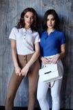 Η προκλητική όμορφη γυναικών δύο μόδας τρίχα brunette γοητείας πρότυπη makeup φορά τα ενδύματα παντελονιού μπλουζών μεταξιού για  στοκ εικόνα