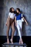 Η προκλητική όμορφη γυναικών δύο μόδας τρίχα brunette γοητείας πρότυπη makeup φορά τα ενδύματα παντελονιού μπλουζών μεταξιού για  στοκ εικόνες