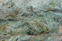 Η προστασία άγριας φύσης, εγκαταλειμμένο δίχτυ του ψαρέματος είναι επικίνδυνη για τα ψάρια και άλλα ζώα που μπορούν να πάρουν στοκ εικόνες με δικαίωμα ελεύθερης χρήσης