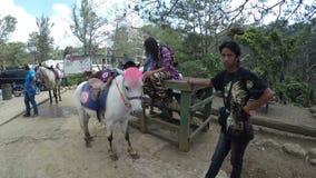 Η προσφορά αλόγων τηρεί το άλογό τους για τη μίσθωση τον αναβάτη φιλμ μικρού μήκους