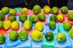 Η προ-αγορά σε Sukkot Στοκ Εικόνες