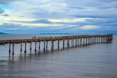 Η πρόσδεση θάλασσας, που οξυδώνεται και που καταστρέφεται στοκ εικόνες