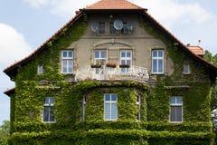 Η πρόσοψη του σπιτιού με το μπαλκόνι καλύπτεται με τον πράσινο κισσό στοκ εικόνα με δικαίωμα ελεύθερης χρήσης