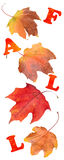 η πτώση αφήνει τη φυσική σύσταση δονούμενη Στοκ φωτογραφία με δικαίωμα ελεύθερης χρήσης