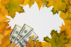 η πτώση βγάζει φύλλα τα χρήμα Στοκ φωτογραφίες με δικαίωμα ελεύθερης χρήσης