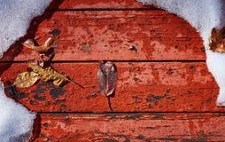 Η πτώση συναντά το χειμώνα Στοκ εικόνα με δικαίωμα ελεύθερης χρήσης