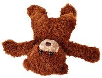 Η πτώση teddy αντέχει Στοκ Εικόνες