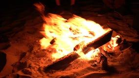 Η πυρά προσκόπων στην παραλία νύχτας 4k UHD απόθεμα βίντεο