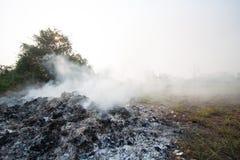 Η πυρκαγιά ή η δασική πυρκαγιά στη φύση, πυροσβέστες θα παλεύει την πυρκαγιά Στοκ Εικόνες