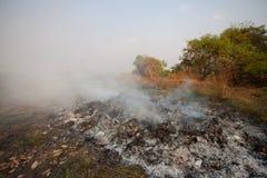 Η πυρκαγιά ή η δασική πυρκαγιά στη φύση, πυροσβέστες θα παλεύει την πυρκαγιά Στοκ Φωτογραφία
