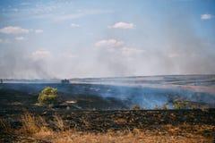 Η πυρκαγιά ή η φυσική πυρκαγιά στους τομείς με τα δέντρα ands καλύπτει με χορτάρι, σκοτεινός καπνός, φυσική καταστροφή Στοκ Εικόνες