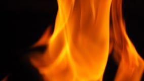 Η πυρκαγιά για το μαγείρεμα καίγεται Στοκ εικόνα με δικαίωμα ελεύθερης χρήσης
