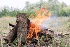 Η πυρκαγιά στη φύση Στοκ εικόνα με δικαίωμα ελεύθερης χρήσης