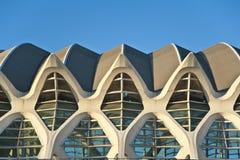 Η πόλη των τεχνών και της επιστήμης στη Βαλένθια. Στοκ φωτογραφία με δικαίωμα ελεύθερης χρήσης