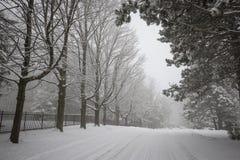 η πόλη κοντά στο δρόμο σιδηροδρόμων λάμπει ήλιος χιονιού στο χειμερινό δάσος Στοκ Φωτογραφία