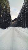 η πόλη κοντά στο δρόμο σιδηροδρόμων λάμπει ήλιος χιονιού στο χειμερινό δάσος Στοκ Εικόνα