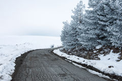 η πόλη κοντά στο δρόμο σιδηροδρόμων λάμπει ήλιος χιονιού στο χειμερινό δάσος Στοκ Φωτογραφίες