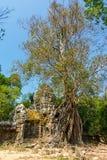 Η πύλη στο ναό SOM TA, Siem συγκεντρώνει, Καμπότζη Στοκ Εικόνες