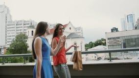 Η πλάγια όψη των όμορφων νέων γυναικών που περπατούν με τις τσάντες αγορών, ομιλία συζητά, επιβραδύνει τον πυροβολισμό MO stedica απόθεμα βίντεο
