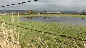 Η πλημμύρα γεωργικής γης μετακινείται τον πυροβολισμό απόθεμα βίντεο