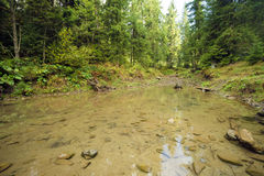 Η ροή του νερού στον ποταμό βουνών Ποταμός βουνών Carpathians Στοκ εικόνες με δικαίωμα ελεύθερης χρήσης