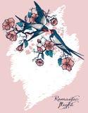 Η ρομαντική κάρτα με το πέταγμα καταπίνει και bloomig δέντρων κλάδοι Στοκ Εικόνες