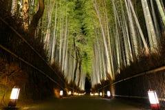 Η ρομαντική πορεία μέσω του δάσους μπαμπού από τα φανάρια κατά τη διάρκεια του φεστιβάλ Arashiyama Hanatouro στο Κιότο Στοκ εικόνα με δικαίωμα ελεύθερης χρήσης