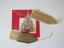η δροσερή πράσινη φωτογραφία διακοσμήσεων διακοπών χαιρετισμών σύνθεσης Χριστουγέννων παρουσιάζει τις κόκκινες εποχές Στοκ Εικόνα