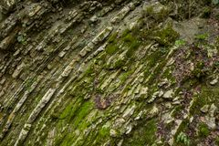 Η ρωγμή του απότομου βράχου στο φαράγγι Στοκ εικόνες με δικαίωμα ελεύθερης χρήσης