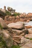 Η ρόδινη ακτή γρανίτη, σε Ploumanach, Βρετάνη, Γαλλία Στοκ φωτογραφίες με δικαίωμα ελεύθερης χρήσης