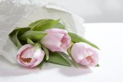Η ρόδινη ανθοδέσμη λουλουδιών τουλιπών επετείου που τυλίγεται στη Λευκή Βίβλο Στοκ Φωτογραφία