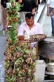 Η Ρώμη, Ιταλία, μετανάστης πωλεί το κάστανο Στοκ εικόνα με δικαίωμα ελεύθερης χρήσης