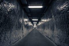 Η σήραγγα - στο ορυχείο Στοκ Φωτογραφία