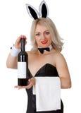Η σερβιτόρα στο κοστούμι λαγουδάκι παρουσιάζει ένα μπουκάλι του κρασιού στοκ φωτογραφία