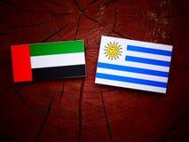Η σημαία των Ηνωμένων Αραβικών Εμιράτων με τη σημαία Uruguaian σε ένα κολόβωμα δέντρων είναι Στοκ Εικόνα