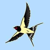 Η σιταποθήκη καταπίνει το πουλί ελεύθερη απεικόνιση δικαιώματος
