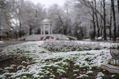 Η σιωπή του παλαιού πάρκου Στοκ εικόνες με δικαίωμα ελεύθερης χρήσης