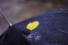 Η σκηνή με μια ομπρέλα Στοκ φωτογραφίες με δικαίωμα ελεύθερης χρήσης
