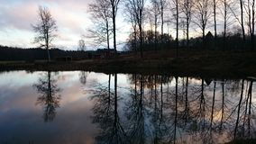 Η σκιά δέντρων Στοκ φωτογραφία με δικαίωμα ελεύθερης χρήσης