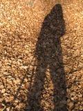 η σκιά μου Στοκ φωτογραφίες με δικαίωμα ελεύθερης χρήσης