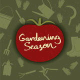Η σκιαγραφία ντοματών με το χέρι σκιαγράφησε την εγγραφή εποχής κηπουρικής επίσης corel σύρετε το διάνυσμα απεικόνισης Στοκ Εικόνα