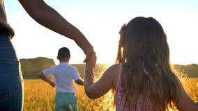 Η σκιαγραφία της μητέρας με τα παιδιά περπατά στον ήλιο στον τομέα το καλοκαίρι, που κρατά το χέρι κορών, οικογενειακή έννοια φιλμ μικρού μήκους