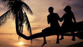 Η σκιαγραφία του νέου ευτυχούς πατέρα με την κόρη του κάθεται σε έναν φοίνικα κατά τη διάρκεια του καταπληκτικού ηλιοβασιλέματος  φιλμ μικρού μήκους
