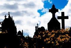 Η σκιαγραφία του νεκροταφείου, η εικόνα παρουσιάζει πολλή διαγώνια ταφόπετρα και τομέα του κίτρινου λουλουδιού μαργαριτών με το δ στοκ εικόνες