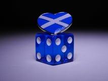 Η Σκωτία ` s τελευταία ρίχνει χωρίζει σε τετράγωνα Στοκ Εικόνες
